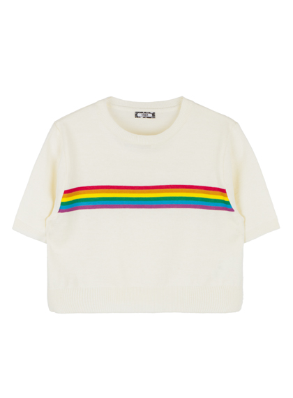 Rainbow Panel Cropped Knit Top