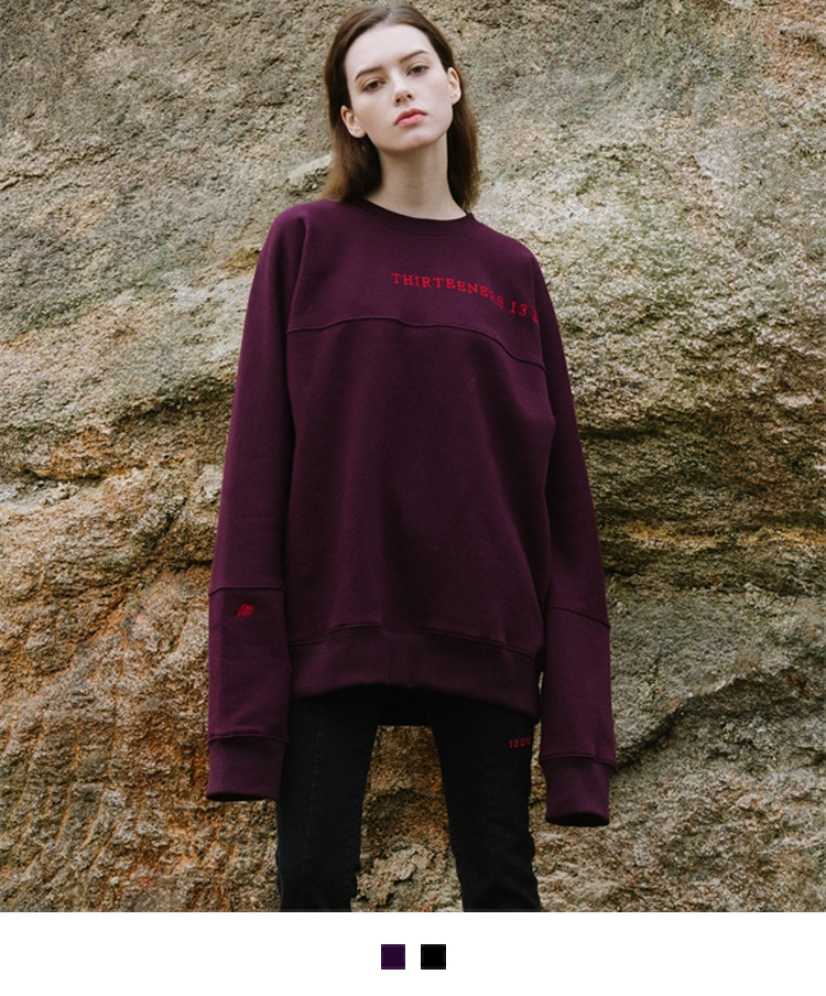 HIDEEmbroidered Accent Oversized Sweatshirt