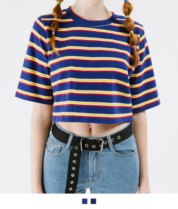 Multicolored Stripe Crop T-Shirt