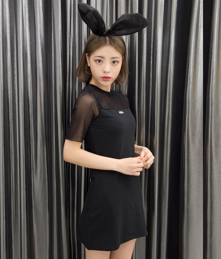 HIDESee-Through Panel Dress
