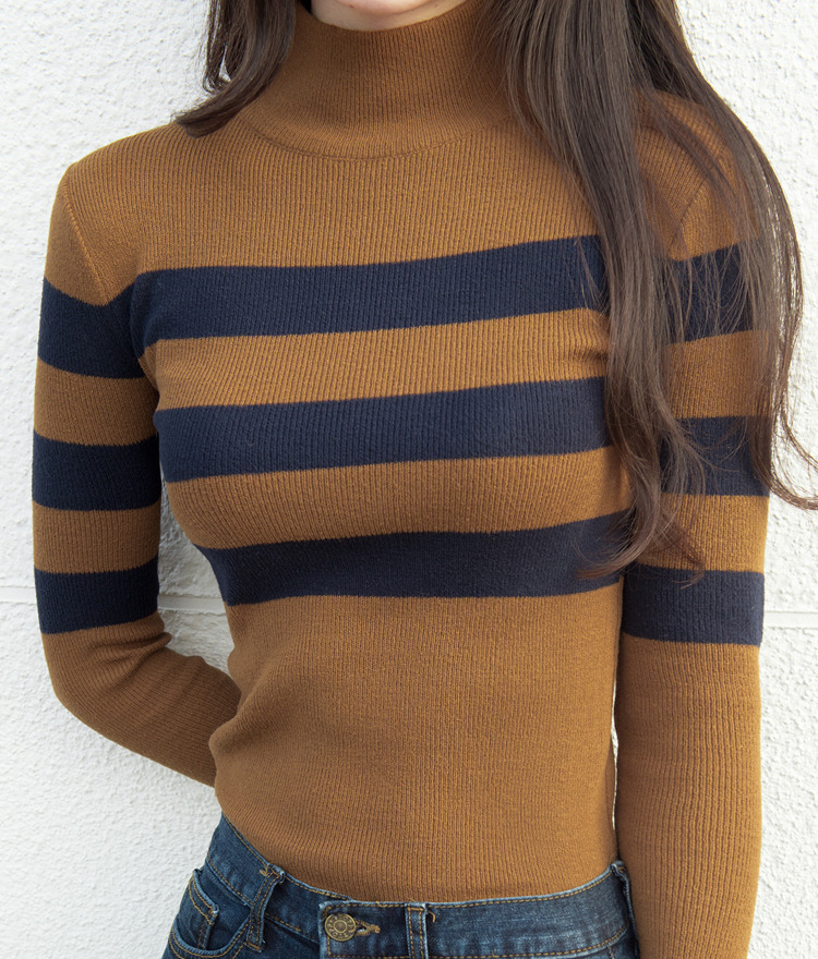 Stripe Accent High Neck Top